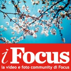 Concorso IFocus