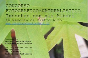 Concorso_fotografico_alberi